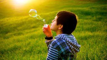 Soap_bubbles_in_Algerian_grassland
